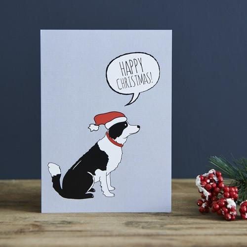 Sweet William Border Collie Christmas Card