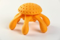 Kiwi Walker Lets Play Octopus