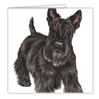 WaggyDogz Scottish Terrier Greetings Card