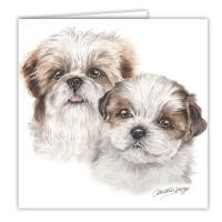 WaggyDogz Shih Tzu Puppies Greetings Card