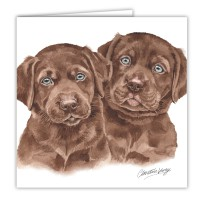 WaggyDogz Chocolate Labrador Puppies Greetings Card