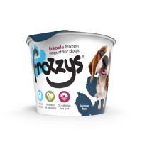 Frozzys Frozen Yogurt 85g