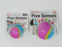 Sharples Five Senses Sensory Ball