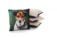Country Matters Amber the Jack Russell Cushion