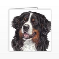 WaggyDogz Bernese Mountain Dog Greetings Card