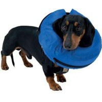 Buster Inflatable Collar