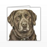 WaggyDogz Chocolate Labrador Greetings Card