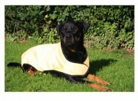Prestige Pets Cool Dog Cooling Coat